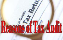 expatriate tax audit reasons