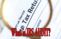 what is irs audit expats